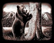Product Image. Title: Copperfoil Kit 8&quot;X10&quot;-Bear Hug