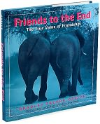 Product Image. Title: Friends to the End: The True Value of Friendship