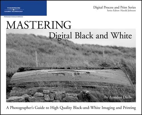 Mastering Digital Black and White~tqw~_darksiderg preview 0