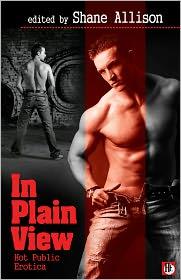 Shane Allison (Editor) - In Plain View: Hot Public Erotica
