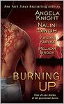 Book Cover Image. Title: Burning Up, Author: by Angela Knight