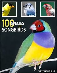 Tony Northrup - 100 Species of Songbirds: A Picture Book for Bird Watchers and Lovers