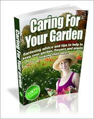 Buy best plants for cut flowers - Caring For Your Garden - Gardening Advice And Tips To Help To Keep Your Garden, Flowers And Plants Looking Their Best