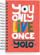 Product Image. Title: 100% Recycled You Only Live Once Lined Spiral Journal 6x9