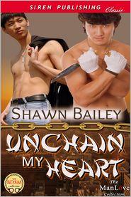Shawn Bailey - Unchain My Heart