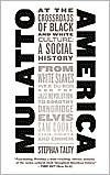 Mulatto America: At the Crossroads of Black and White Culture: A Social History