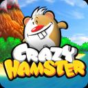 App Buzz: Crazy Hamster & Izik