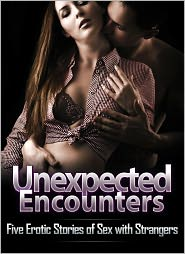 Kathi Peters, Amber Cross, Alice J. Woods Anna Price - Unexpected Encounters: Five Erotic Stories of Sex with Strangers
