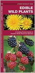 Book Cover Image. Title: Edible Wild Plants:  An Introduction to Familiar North American Species, Author: James Kavanagh,�James Kavanagh,�Raymond Leung