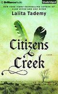 Citizens Creek, Vol. 7
