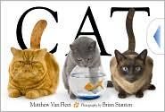 Cat by Matthew Van Fleet: Book Cover