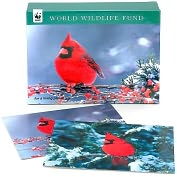 Product Image. Title: World Wildlife Fund Cardinal Holiday Cards set of 20