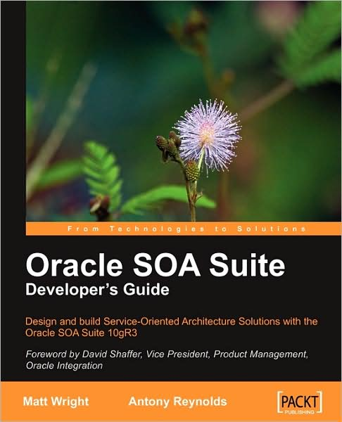 Oracle SOA Suite Developers Guide~tqw~_darksiderg preview 0
