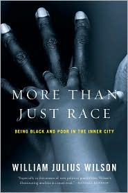 More than Just Race by William Julius Wilson: Book Cover