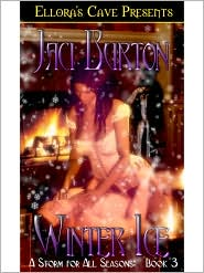 Jaci Burton - Winter Ice (A Storm for All Sesons, Book Three)