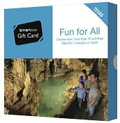 Product Image. Title: Fun For All Gift Card - Texas Edition