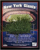 Product Image. Title: New York Giants Stadium, Final Season 8x10 Plaque with Game Used Turf