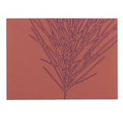 Product Image. Title: Zebra Grass Boxed Note Card Set of 10