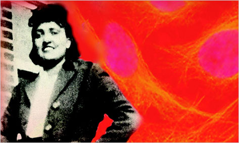 "rebecca skloot essays Rebecca skloot, a science journalist on the faculty at the university of memphis, has a smash, crossover hit with ""the immortal life of henrietta lacks,"" an investigation into the ethics of medical research."