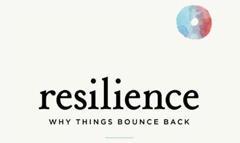 Resilience Why Things Bounce Back